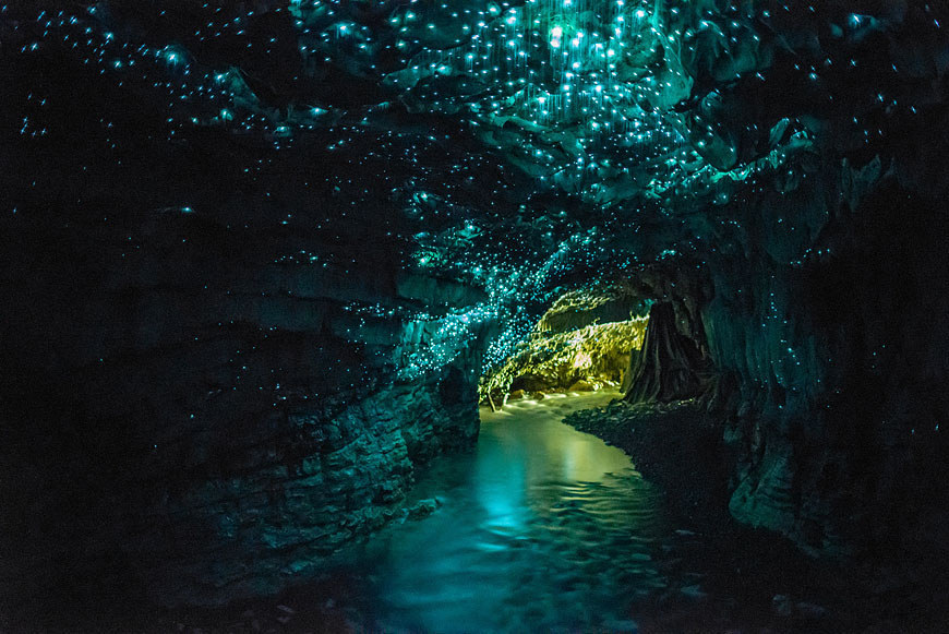 Glowworm-Caves